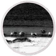 22 Gulls Round Beach Towel