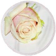 Beautiful Rose Round Beach Towel