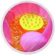 Blossoming Lotus Flower Closeup Round Beach Towel