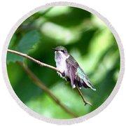 2757 -  Hummingbird Round Beach Towel