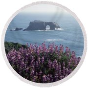2a6101 Arched Rock And Blue Pod Lupine Ca Round Beach Towel