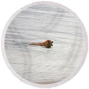3 - Golden Lab Lovin Life Round Beach Towel