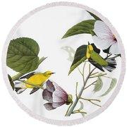 Audubon Warbler Round Beach Towel
