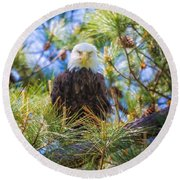 Bald Eagle Round Beach Towel