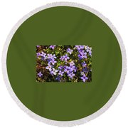 Bluets Round Beach Towel
