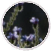 Blurred Seasonal Flower With Dark Background Round Beach Towel