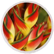 Bunch Of Heliconia Round Beach Towel