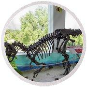 Centro De Investigaciones Paleontologicas Round Beach Towel