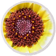 Chrysanthemum Named Polar Star Round Beach Towel