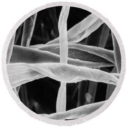 Cotton Fibers Round Beach Towel by Science Source