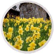 Daffodils And Bar Walls, York, Uk. Round Beach Towel