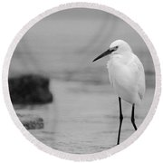 Egret In Black And White Round Beach Towel