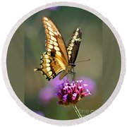 Giant Swallowtail Butterfly Round Beach Towel