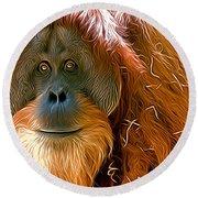 Orangutan  Round Beach Towel