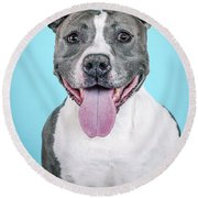 Roscoe2 Round Beach Towel