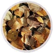 Silver Birch Leaves Lying On A Brick Path In A Cheshire Garden On An Autumn Day   England Round Beach Towel