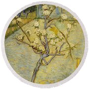 Small Pear Tree In Blossom Round Beach Towel