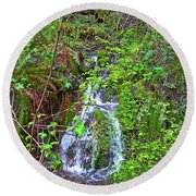Spring In The Gorge Round Beach Towel