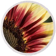 Sunflower Named Ruby Eclipse Round Beach Towel