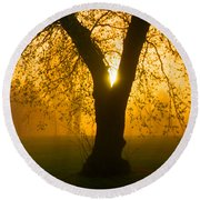 Sunrise Trees Fog Round Beach Towel