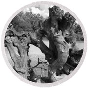 Twisted Driftwood Round Beach Towel