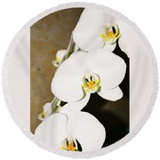 3 White Orchids Round Beach Towel