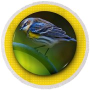 Yellow-rumped Warbler Round Beach Towel