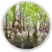 cypress forest and swamp of Congaree National Park in South Caro Round Beach Towel