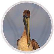 35- Brown Pelican Round Beach Towel