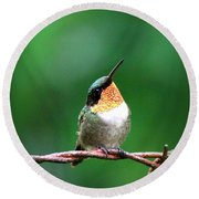 3531 - Ruby-throated Hummingbird Round Beach Towel