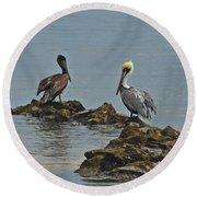 37-  Pelicans Round Beach Towel