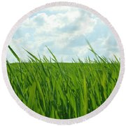 38744 Nature Grass Round Beach Towel