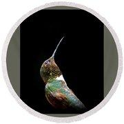 3990 - Ruby-throated Hummingbird Round Beach Towel