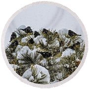 4 And 20 Blackbirds Round Beach Towel