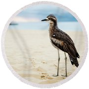 Bush Stone-curlew Resting On The Beach. Round Beach Towel
