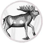Elk/moose Round Beach Towel