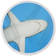 Grey Reef Shark Round Beach Towel