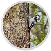 Lesser Spotted Woodpecker Round Beach Towel