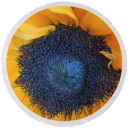 Macro Shot Of Flower Round Beach Towel