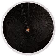 Marbled Orb Weaver Spider Round Beach Towel