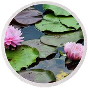 Pink Water Lily Series Round Beach Towel