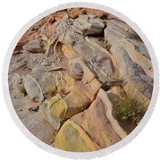 Rainbow Of Color In Valley Of Fire Round Beach Towel