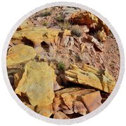 Splash Of Color In Valley Of Fire Round Beach Towel