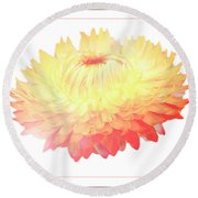 Strawflower Round Beach Towel