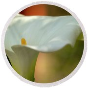 White Calla Round Beach Towel