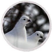 Willow Ptarmigan Round Beach Towel