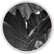 4327- Leaf Black And White Round Beach Towel