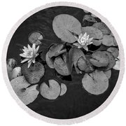 4425- Lily Pad Black And White Round Beach Towel
