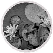 4432- Lily Pads Black And White Round Beach Towel