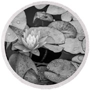 4434- Lily Pads Black And White Round Beach Towel